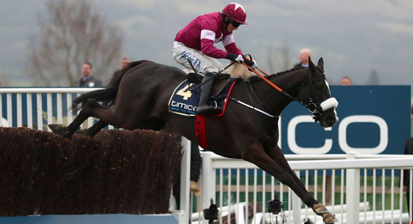 O Don Cossack to Gold Cup στην αυλαία του Cheltenham