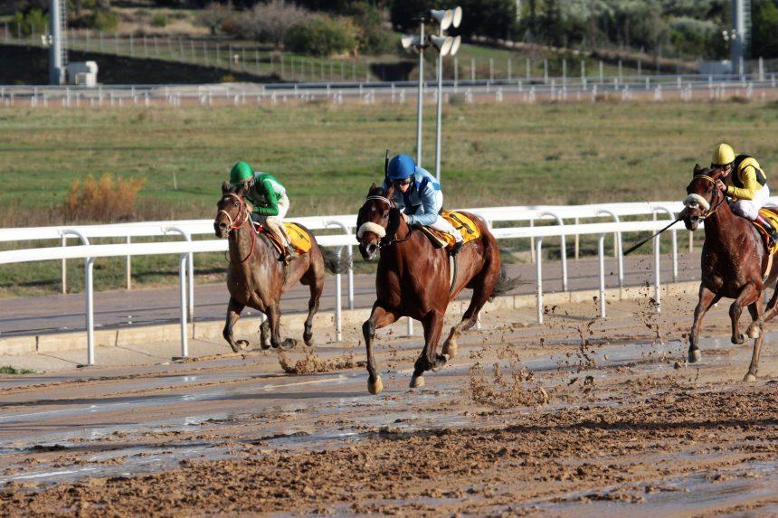 Έξι ελληνικές ιπποδρομίες και με αιχμή το κλασικό κύπελλο Ηνιόχου, την Παρασκευή 4 Μαίου