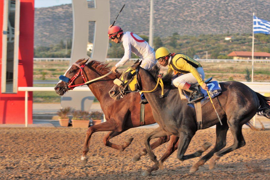 Οκτώ ελληνικές ιπποδρομίες την Παρασκευή 20 Ιουλίου και διπλό Τζακ Ποτ στο Σκορ 6