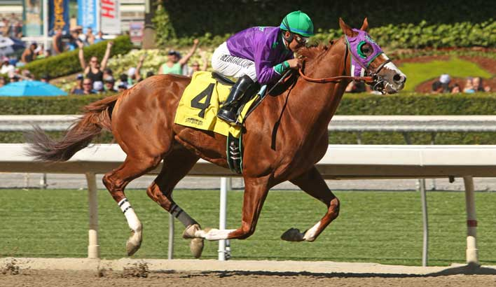 california-chrome.jpg