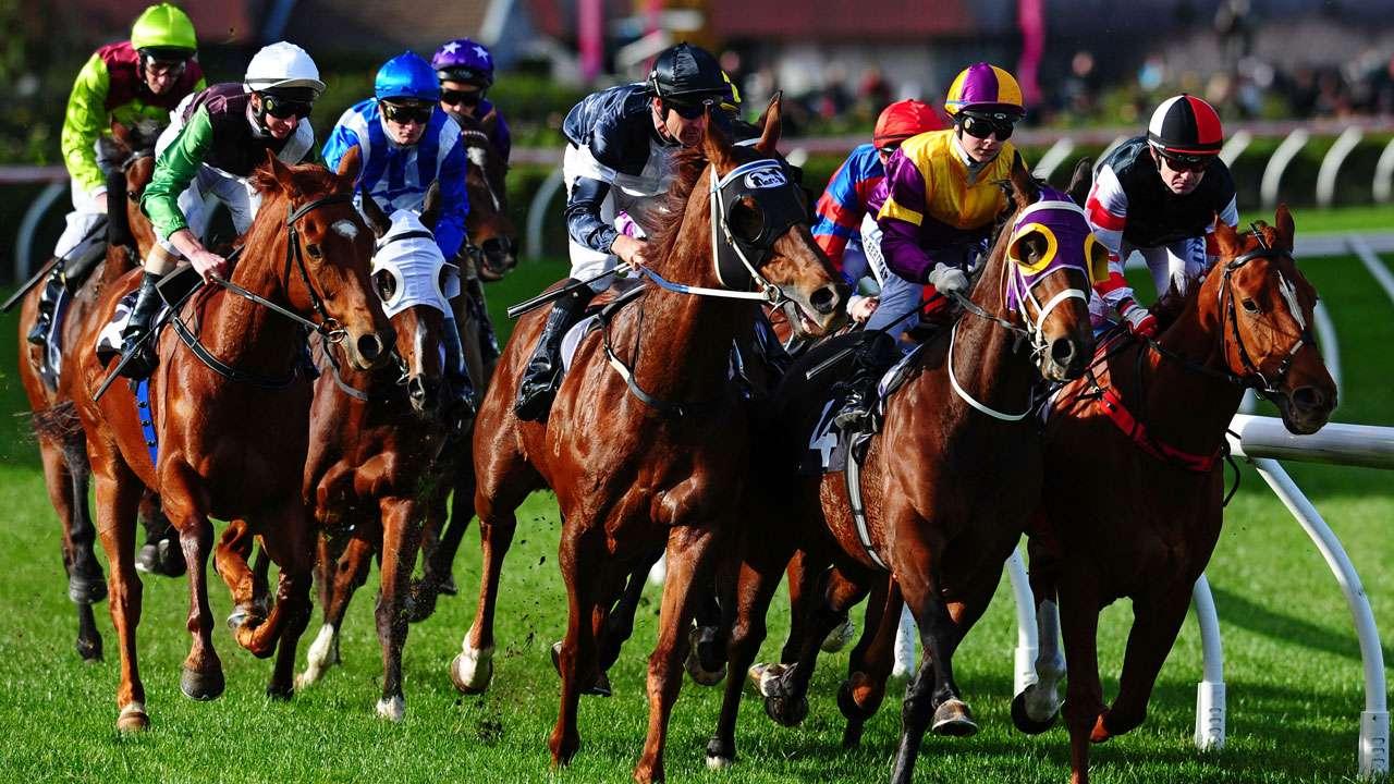 Australian-Horse-Races-2222.jpeg