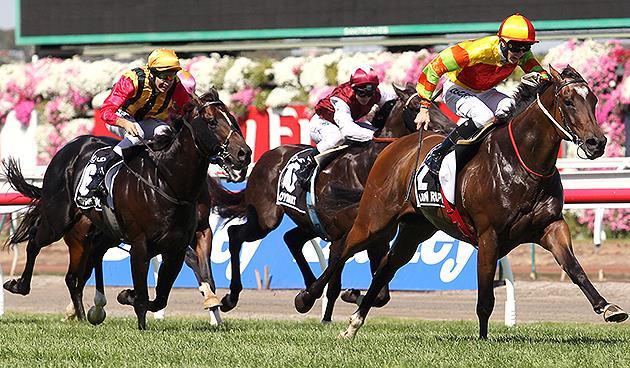 Australian-Races3333.jpg