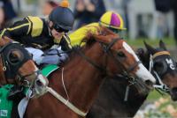 Australia-races12111.png