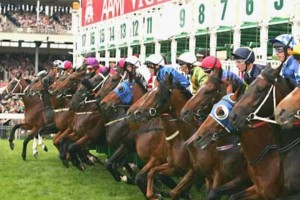 Australian-Horse-Races11.jpg