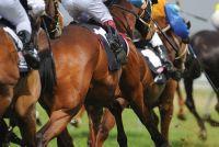 Australian-Horse-Races5.jpg