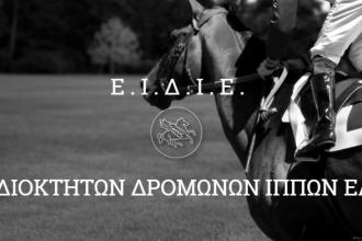 eidie-logo.png