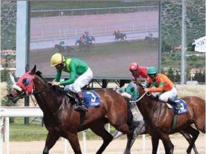 Αναλυτικό πρόγραμμα ελληνικών ιπποδρομιών Κυριακής 26 Μαίου 2019