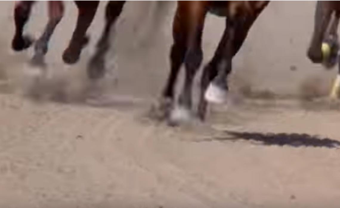 εκκινηση κυπριακων ιπποδρομιων1